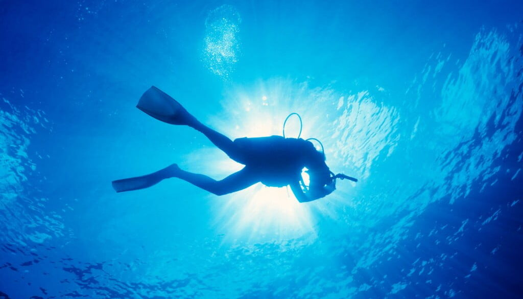 Diving in Swanage Bay
